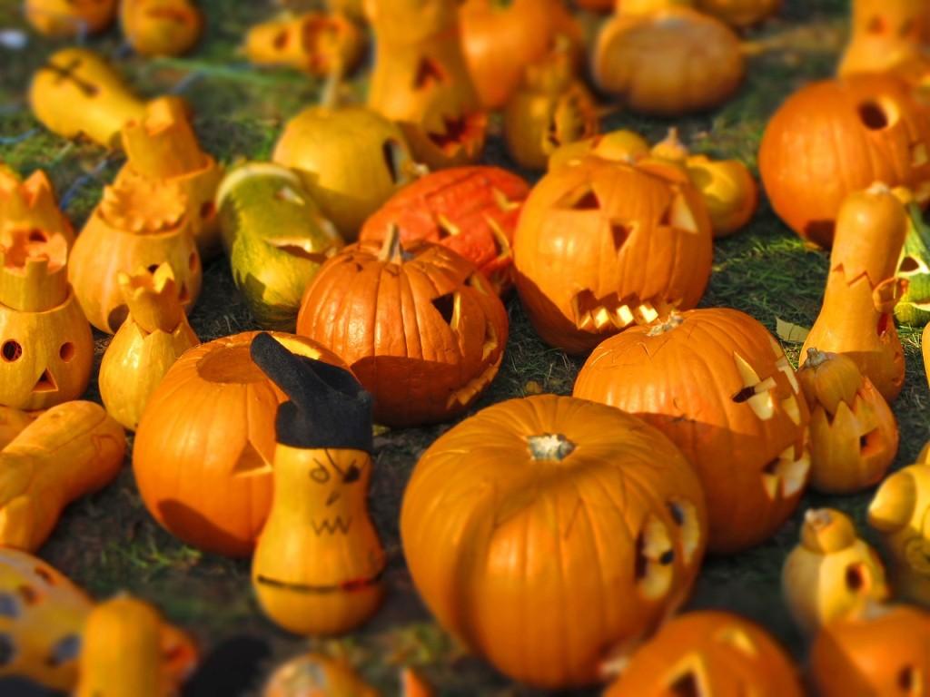 アイキャッチ かぼちゃ